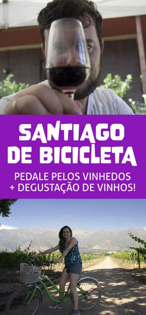 Tour Bicicleta e Vinho em Santiago, degustação na vínicola mais perto na capital Chilena
