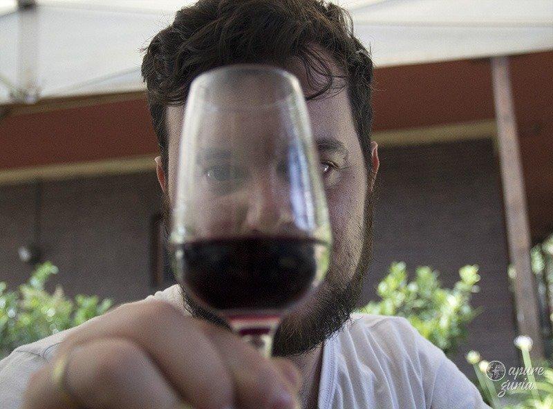 degustacao de vinho em Santiago do chile