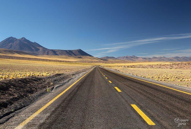 estrada atacama lagunas altiplanicas1