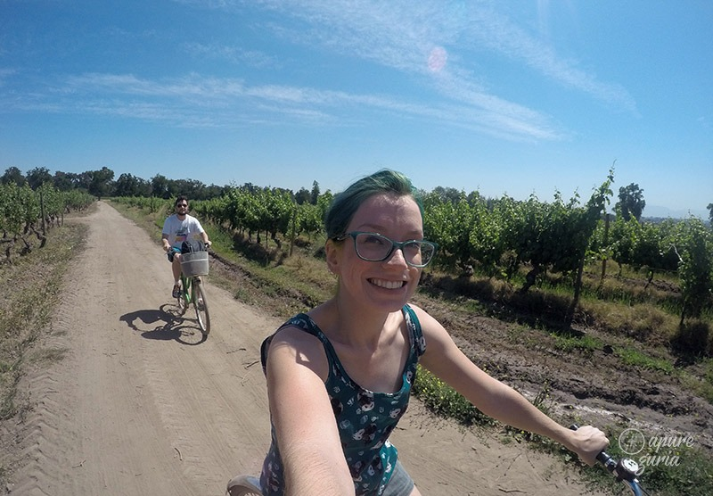 la bicicleta verde bike wine tour santiago