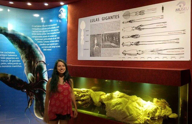 lula gigante museu ocenaografico