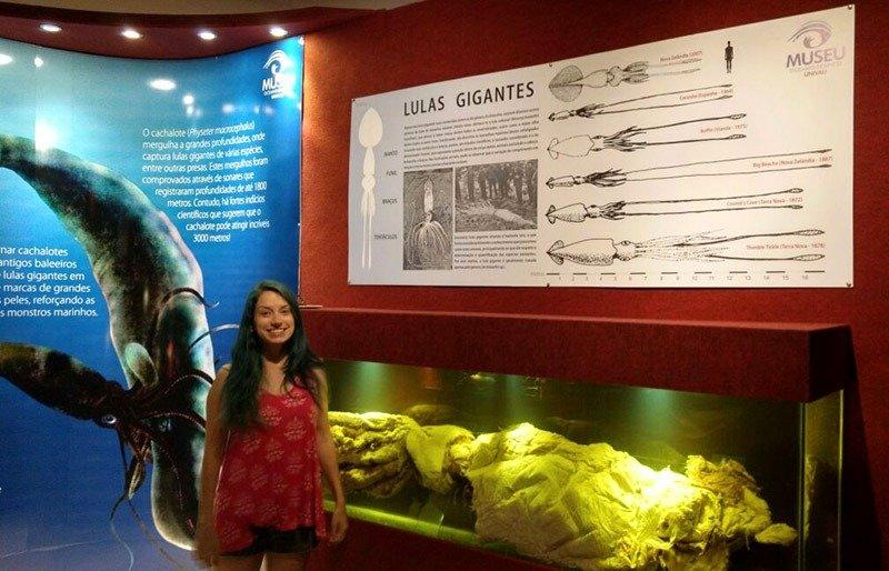 museu oceanografico univali piçarras
