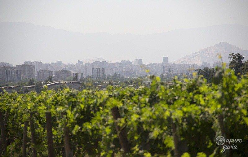 vinicola para visitar em santiago cousino macul