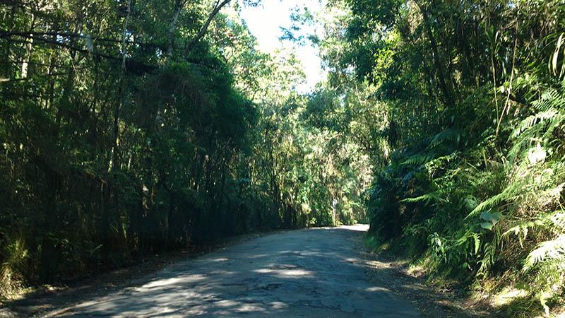 estrada parque passauna
