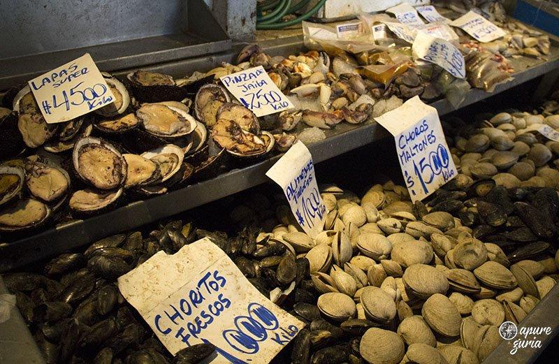 mercado central peixes santiago