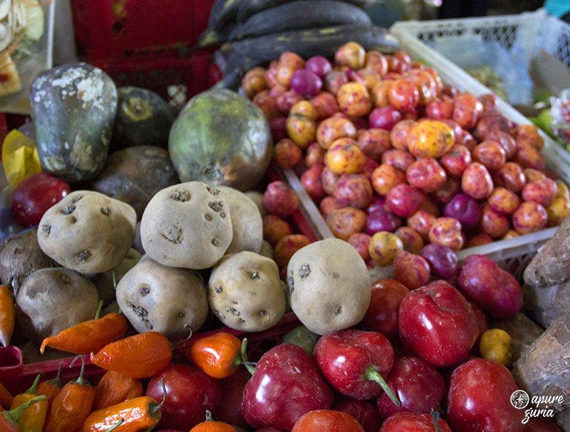mercado de la vega em santiago