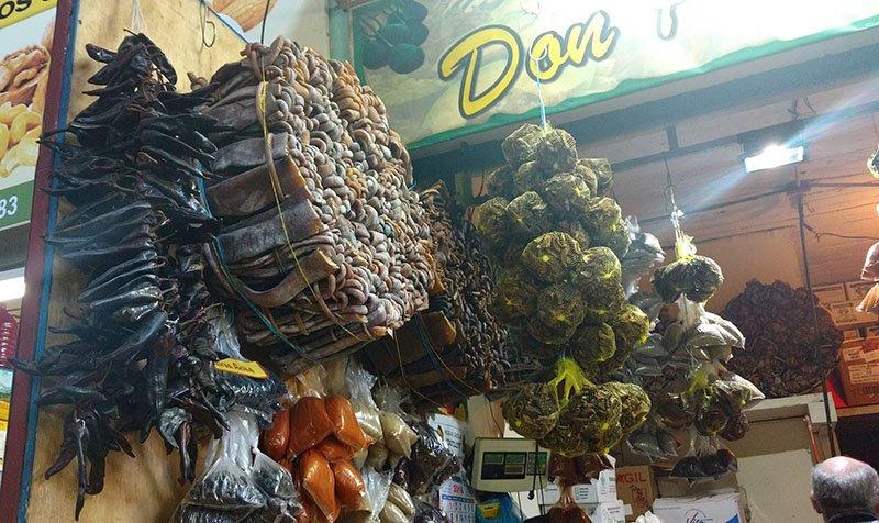 mercado de la vega santiago de chile