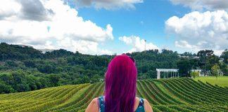 o que fazer na serra gaucha vinicola chandon