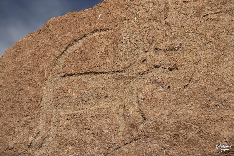 valle del arcoiris hierbas buenas petroglifo raposa