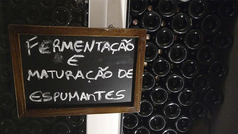 vinicola alma unica bento gonçalves
