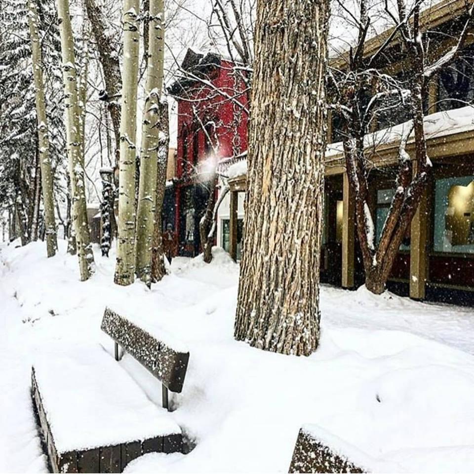 Work Experience USA aspen snowmass