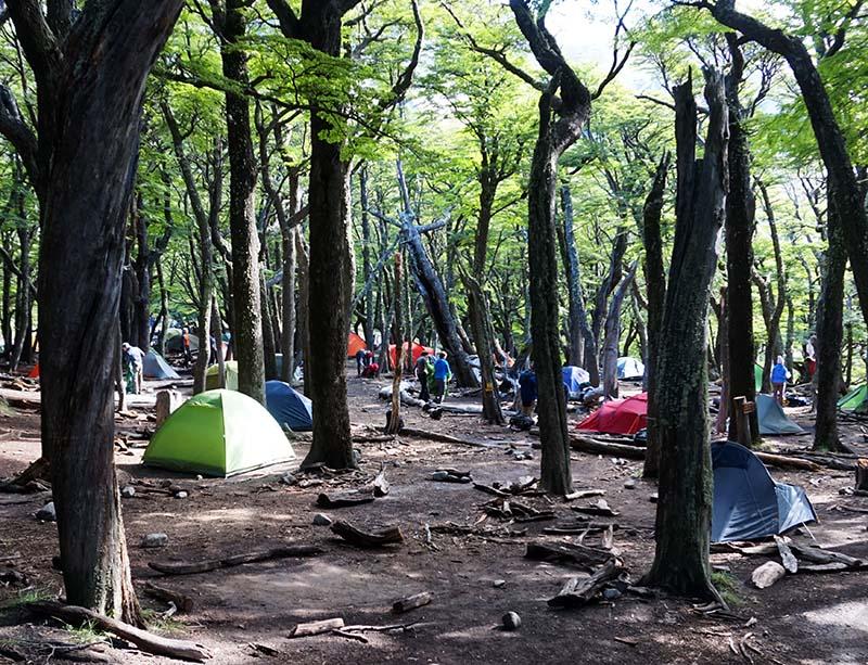 camping poincenot trekking el chalten
