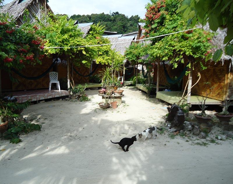 erros na primeira viagem a tailandia