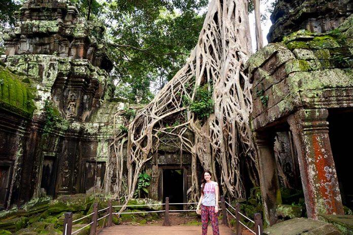 roteiro em angkor templo lara croft ta prohm