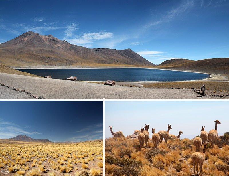 top 5 melhores passeios do deserto do atacama