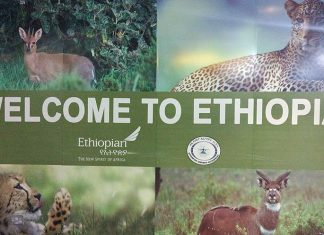 ethiopian airlines review problemas