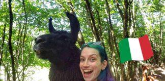 aventuras na fazenda da italia aprender italiano sozinha vocabulario