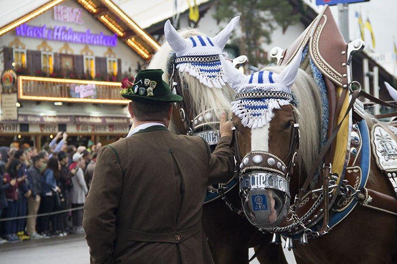cavalos desfile oktoberfest munique