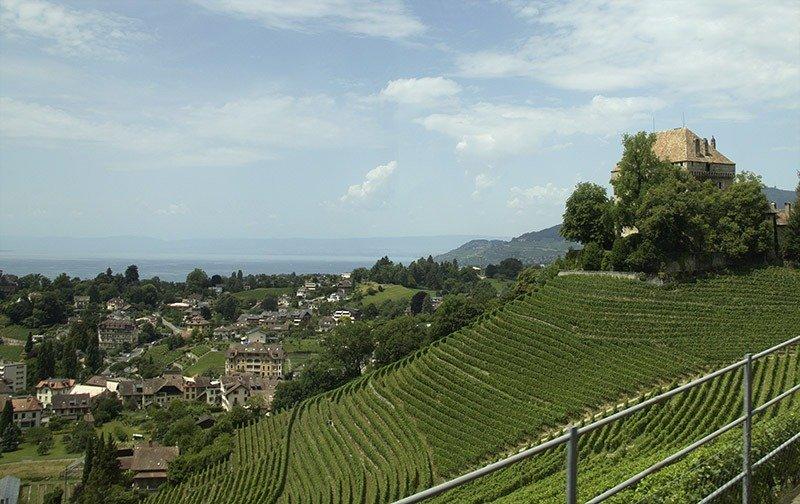 montreux riviera suica vinhedos