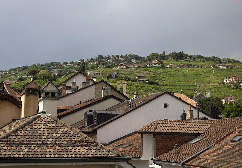 vinhedos da suiça montreux