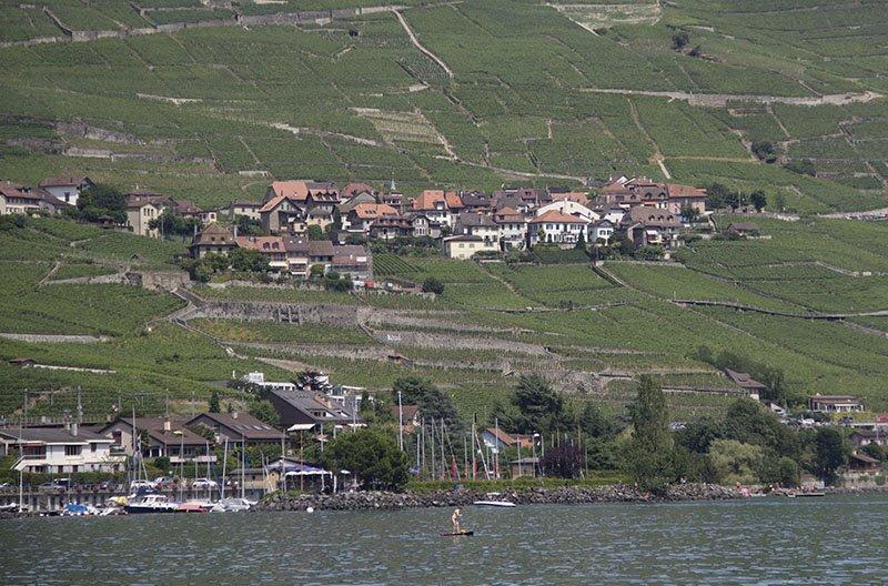 vinhedos na suiça cully montreux