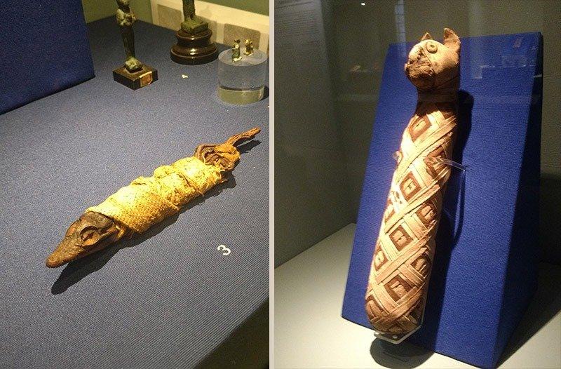 artefatos egipcios castello del buonconsiglio
