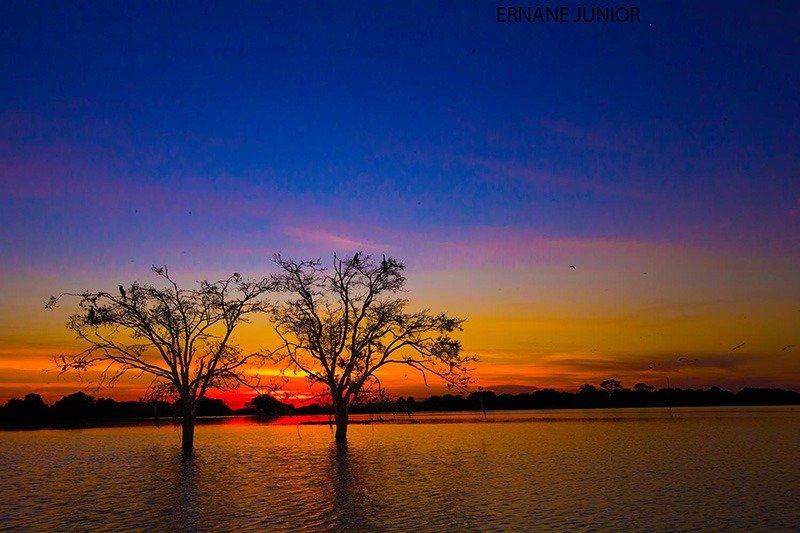 pantanal no entardecer aventuras no brasil