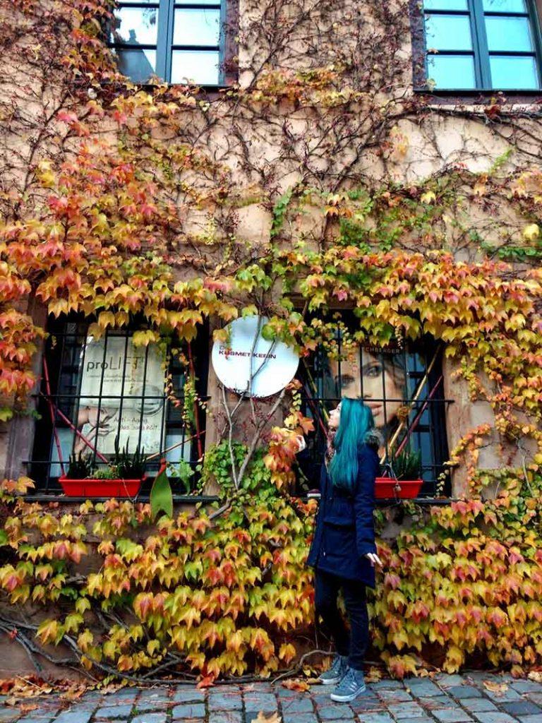 parede coberta com folhas outono nuremberg