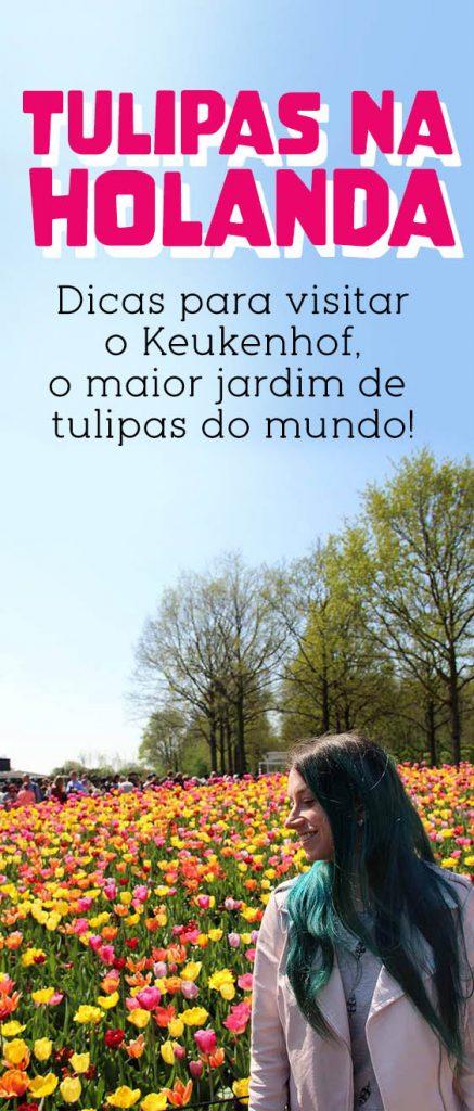 Tulipas na Holanda, dicas para visitar Keukenhof e campos de tulipas!