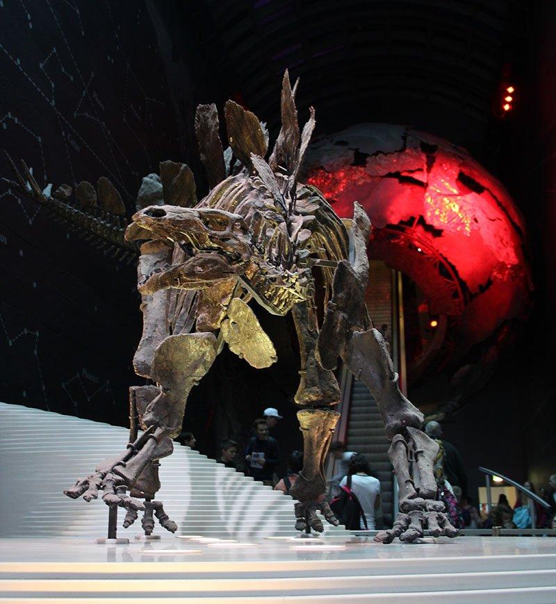 dinossauro museu de historia natural em londres