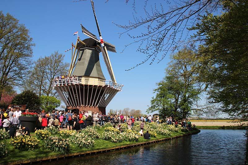 moinho keukenhof parque de tulipas holandas