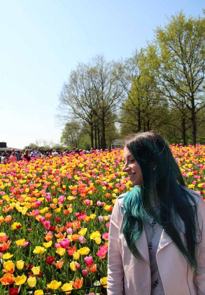 parque de tulipas na holanda keukenhof dicas