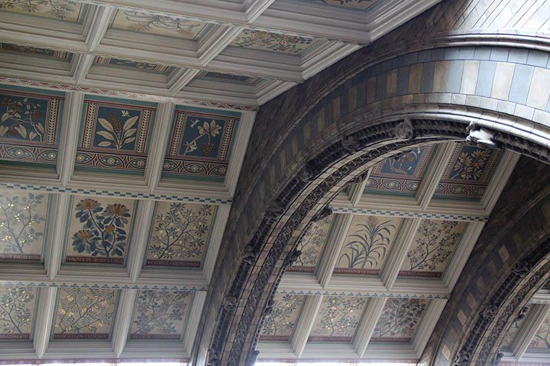 teto decorado com plantas museu de historia natural londres