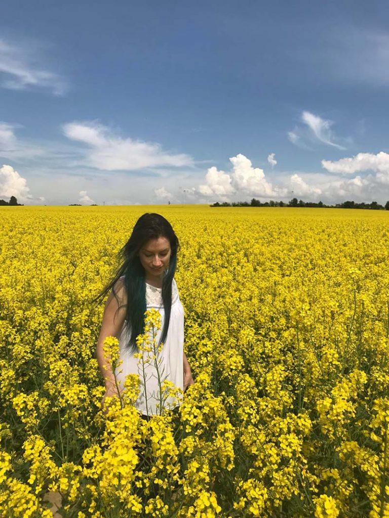 flores amarelas campo de canola alemanha