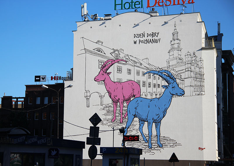 grafitti poznan bodes polonia