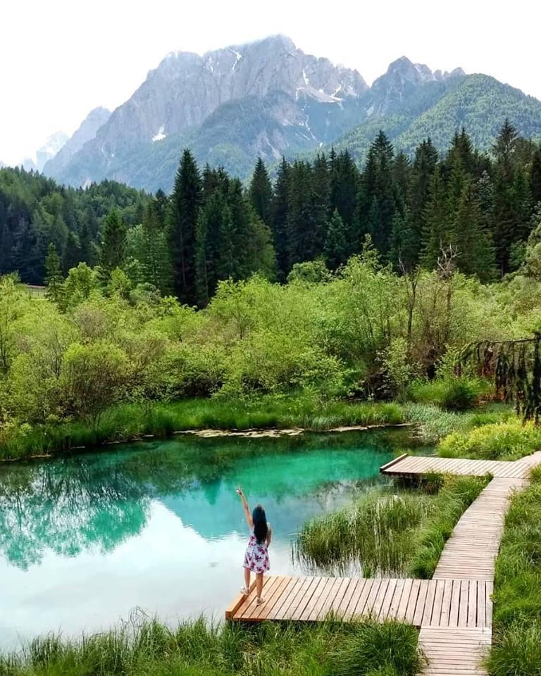 lago zelenci norte da eslovenia turquesa