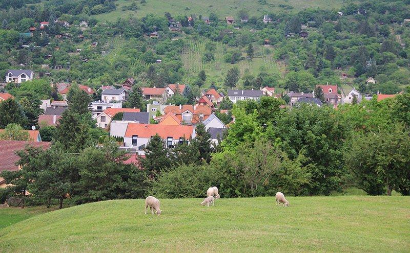 o que fazer na regiao de bratislava castelo devin