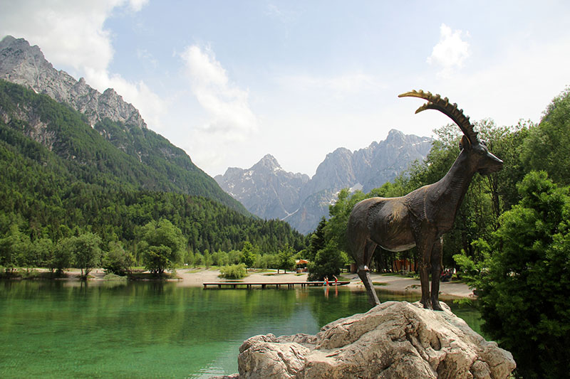 lago jasna eslovenia cabrito montanhes[