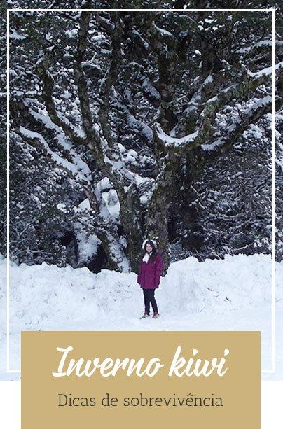 Nova Zelândia - Guia Inverno