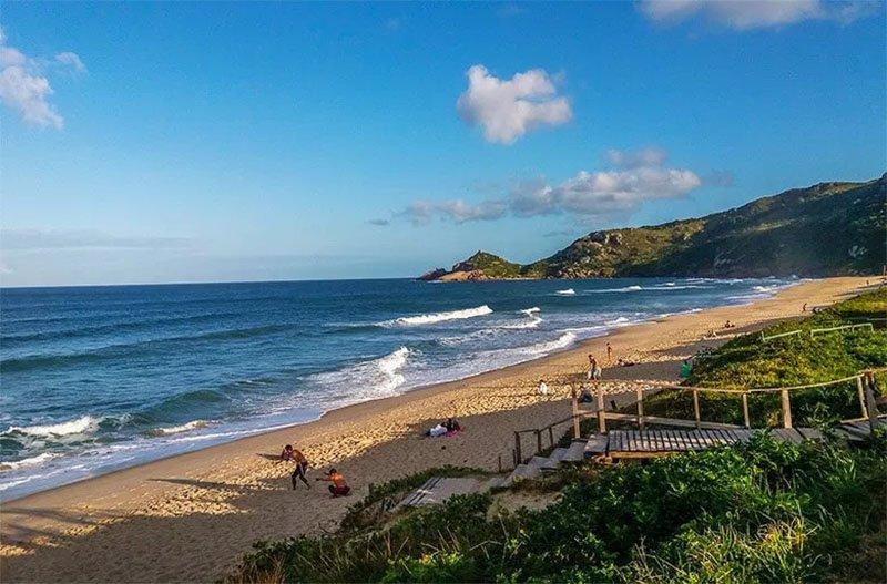 praia mole em florianopolis dicas