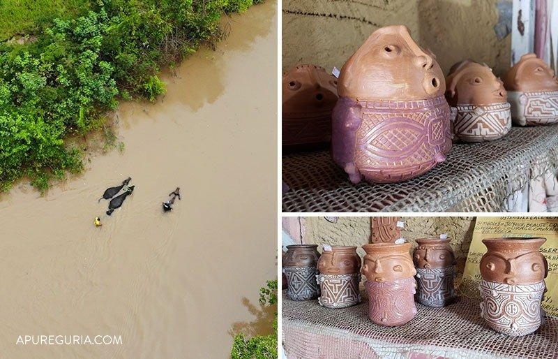 Búfalos nadando e cerâmica marajoara