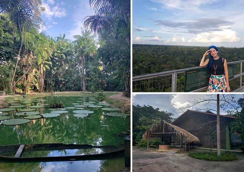 Cenários do MUSA, Museu da Amazônia