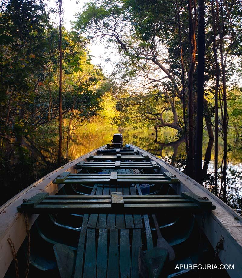 Canoa no Lago Juma