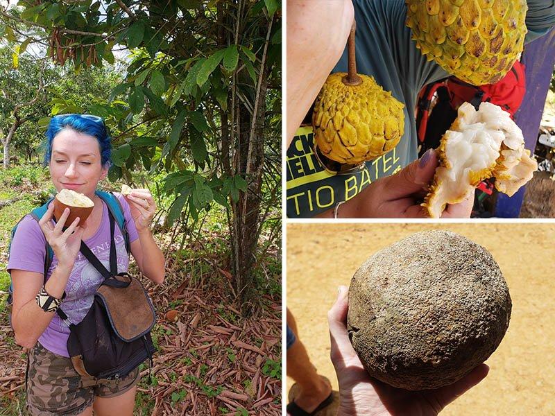 Provamos diversas frutas locais durante a viagem para a Amazônia