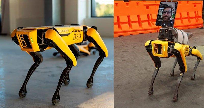 cachorro robo coronavirus Invenções criativas na pandemia
