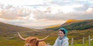 vaquinha de franja highlander cow