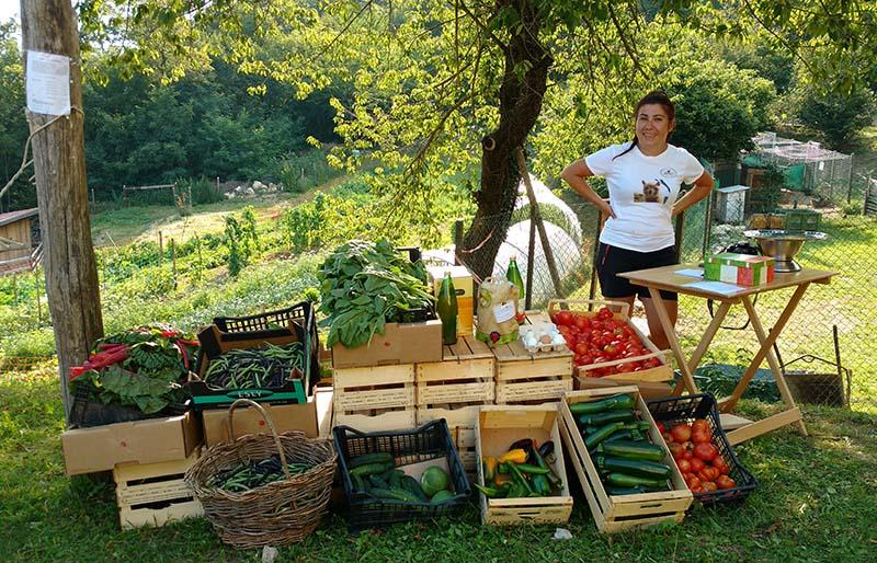venda de vegetais organicos voluntaria fazenda italia