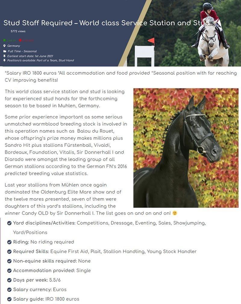 oferta cuidador de cavalos na alemanha com acomodacao