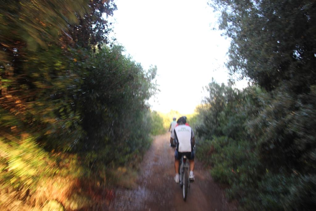 estrada próxima a Lecce