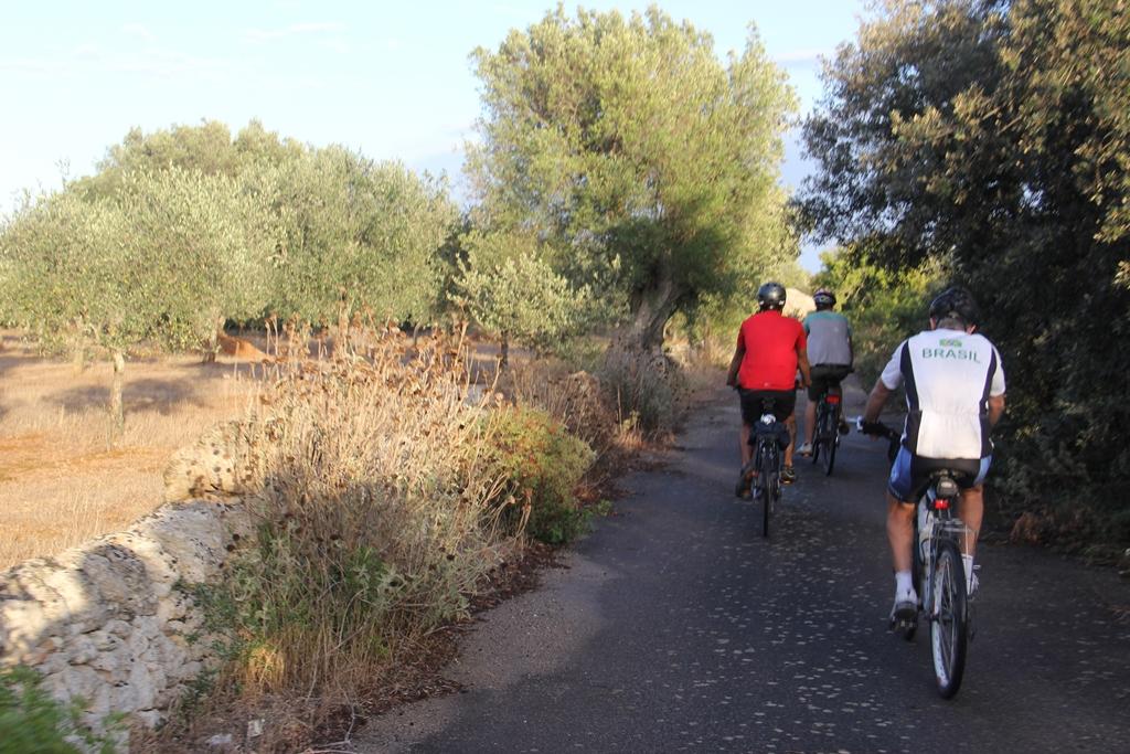 Percorso cicloturístico próximo a Lecce, em uma região de parques...